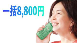 ガラケー一括8,800円!